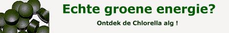 chlorella-alg.jpg (20602 bytes)